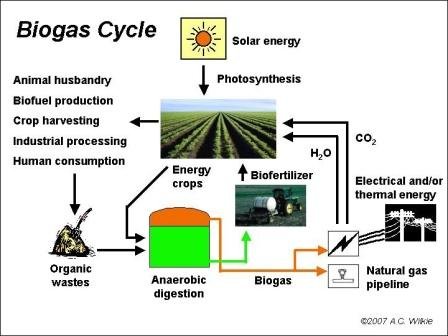 BiogasCycle-wp
